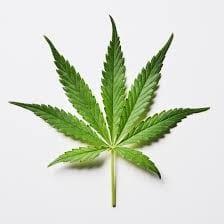 Cannabis Treatment